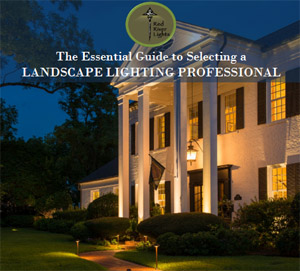 Hire a Landscape Lighting Professional